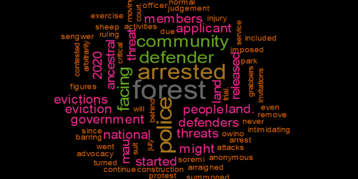Word Cloud African Defenders canva
